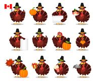 Thanksgiving greeting card with a turkey bird wearing a Pilgrim Stock Images