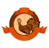 Thanksgiving turkey cartoon character Stock Photography