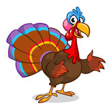 Thanksgiving turkey cartoon waving. Vector character isolated on white background. Royalty Free Stock Photography