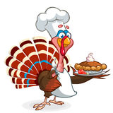 Thanksgiving turkey chief cook serving pumpkin pie. Vector cartoon Royalty Free Stock Photography