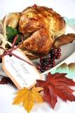 Thanksgiving Turkey closeup. Stock Image