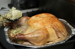 Thanksgiving turkey cooked Royalty Free Stock Photos