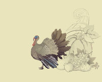 Thanksgiving turkey and cornucopia. Thanksgiving autumn turkey and cornucopia with foods Stock Photography