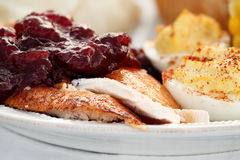 Thanksgiving Turkey with Cranberry Sauce Royalty Free Stock Photo