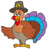 Thanksgiving turkey with hat stock illustration