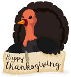 Thanksgiving Turkey holding a Greeting Scroll, Vector Illustration Royalty Free Stock Image