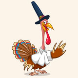 Thanksgiving turkey mascot in Pilgrim hat Stock Photo