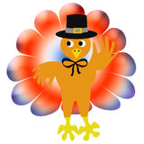 Thanksgiving turkey pilgrim Stock Photos