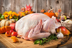 Thanksgiving turkey. Preparing the thanksgiving turkey. Raw turkey with vegetables on cutting board royalty free stock photos
