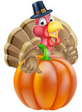 Thanksgiving Turkey and Pumpkin Royalty Free Stock Photo