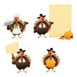 Thanksgiving Turkey Set Royalty Free Stock Images