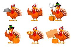 Free Thanksgiving Turkey, Set Of Six Poses Royalty Free Stock Image - 160671326