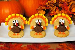 Thanksgiving turkey shaped cookies with autumn leaves and pumpkins. Three Thanksgiving turkey shaped cookies on a plate with autumn leaves and pumpkins stock image
