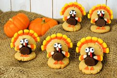 Thanksgiving turkey shaped cookies Royalty Free Stock Image