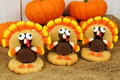 Thanksgiving turkey shaped cookies Stock Images