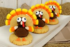 Thanksgiving turkey shaped cookies Royalty Free Stock Photos