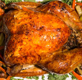 Thanksgiving turkey with vegies on white plate Stock Photo