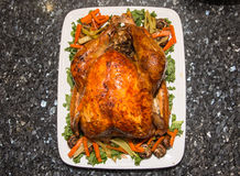 Thanksgiving turkey with vegies on white plate Royalty Free Stock Photos