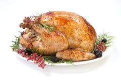 Thanksgiving Turkey on White Stock Photos
