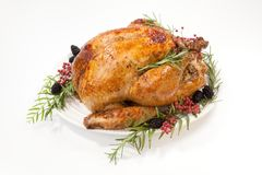 Thanksgiving Turkey on White. Thanksgiving pepper roasted turkey garnished with blackberry and pink peppercorn on white stock images