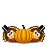 Thanksgiving turkeys with pilgrim hat and pumpkin Stock Image