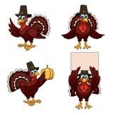 Thanksgiving turkeys set Royalty Free Stock Images