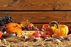 Thanksgiving. Vegetable and fruits on straw in front of old weathered wooden boards with copyspace Stock Photography