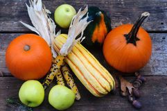 Thanksgiving vegetables Stock Images