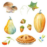 Thanksgiving watercolor clipart Royalty Free Stock Images