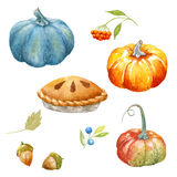 Thanksgiving watercolor clipart Royalty Free Stock Photos
