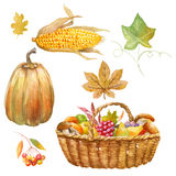 Thanksgiving watercolor clipart Stock Image
