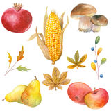 Thanksgiving watercolor clipart Stock Photography
