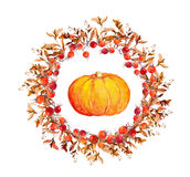 Thanksgiving wreath - pumpkins, berries, autumn leaves. Watercolor round border. For thanks giving day Royalty Free Stock Photo