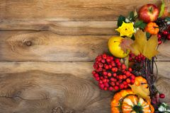 Thanksgiving wreath with pumpkins and rowan berries, copy space. Thanksgiving background with pumpkins, rowan berries and yellow roses wreath, copy space royalty free stock image
