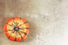 thanksgiving Zucca sul fondo di lerciume immagini stock libere da diritti