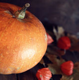 Thanksgivings day pumpkin and candles Stock Photo