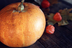 Thanksgivings day pumpkin and candles Stock Images