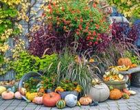 Thansgiving produce display Royalty Free Stock Photo