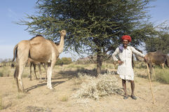 цветастый тюрбан Индии Раджастхана thar пустыни Стоковая Фотография