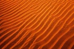 Thar Desert Stock Photos