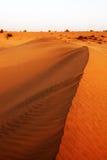 Thar Desert Royalty Free Stock Photos