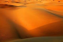 Thar Desert Royalty Free Stock Photo