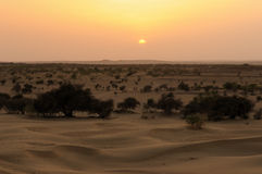 Thar desert in India Royalty Free Stock Photography