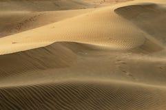 Thar desert in India Royalty Free Stock Image