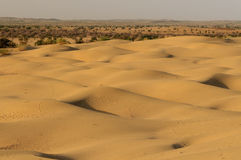 Thar desert in India Stock Photos