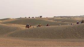 Thar Desert stock footage