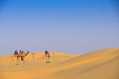 Thar Desert in Western India. Thar Desert or great Indian desert in Western India. Locate near Jaisalmer City in the state of Rajasthan, near the border of Royalty Free Stock Photography