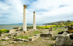 Tharros Royalty Free Stock Photos