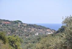 Thassos Augusti 19th: Olivdunge från den Thassos ön i Grekland Royaltyfria Foton