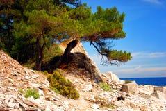 Thassos, Grecja Fotografia Royalty Free